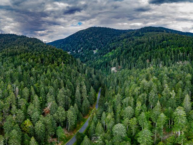 nature montagne vosges drone-vosges hautes-vosges tourisme